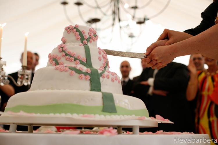 taglio torta Foto Matrimonio Villa Calciati presso Persico Dosimo.