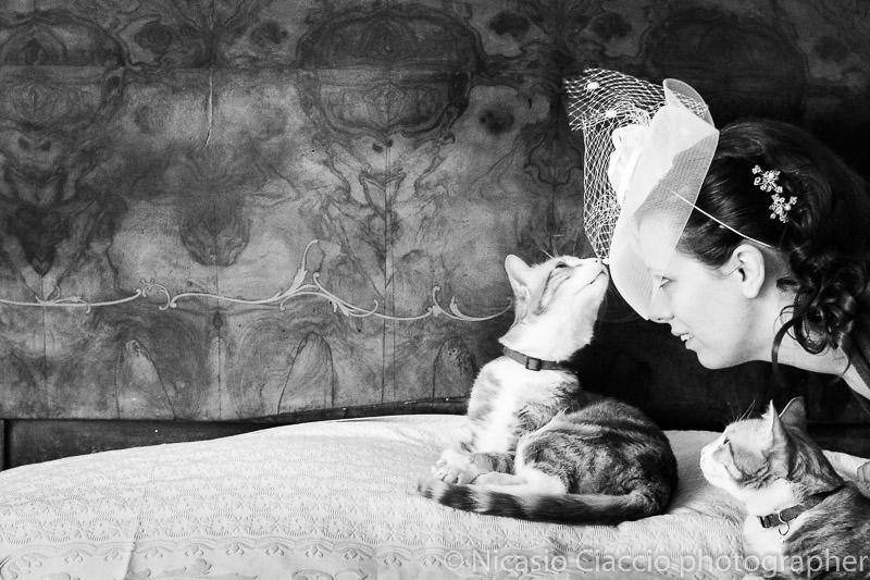 foto  sposa con gatti matrimonio Milano