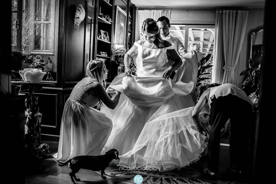 Preparazione sposa e cane bassotto  Foto di Matrimonio
